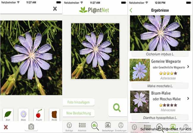 Garten Apps: Pl@ntNet