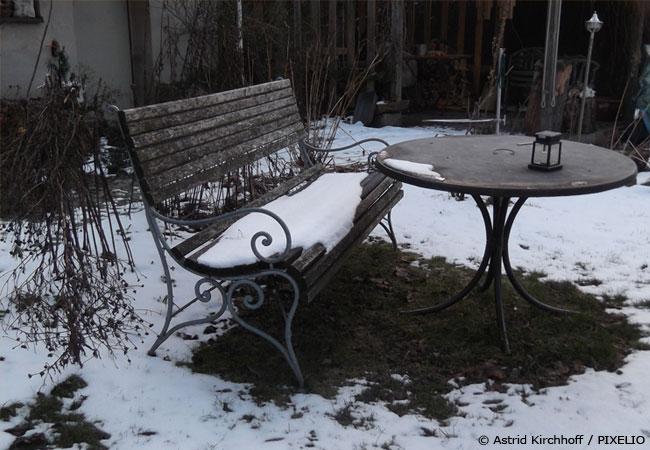 pflanzen-winterfest-machen