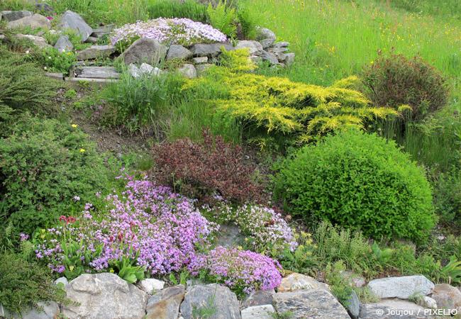 Die passenden Steine für einen Steingarten auswählen.