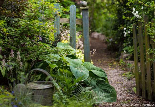 Bauerngarten gestalten
