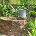 bauerngarten-pflanzen