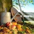 Im Monat September wird nicht nur geerntet sondern auch gesät.