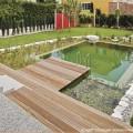 Schwimmteich, Naturpool oder Pool bauen?