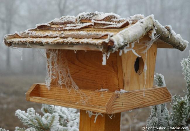 Vogelhaus im November