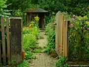 Alte Gartenlaube abbauen