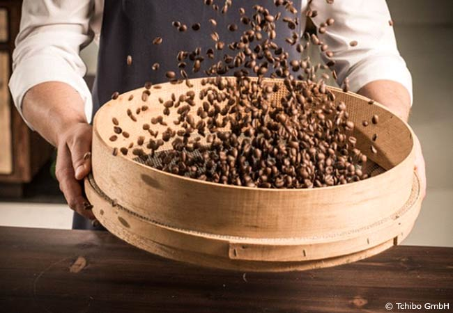 Kaffeesatz als natürlicher Pflenzendünger