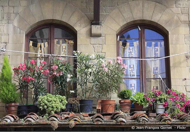 Urban Gardening Fur Ihr Zuhause Garten Gestalten Fur Balkon Und