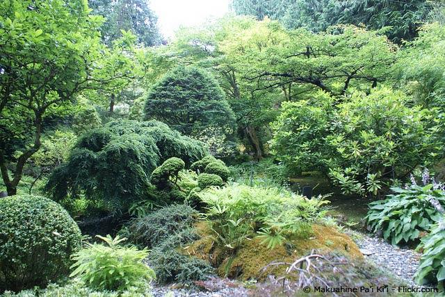Waldgarten im japanischen Stil