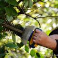 Elektrische Heckenschere für den Garten