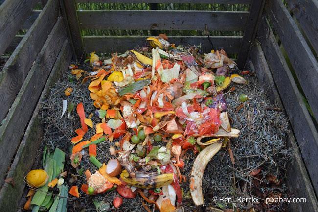 Biomüll auf dem Komposthaufen