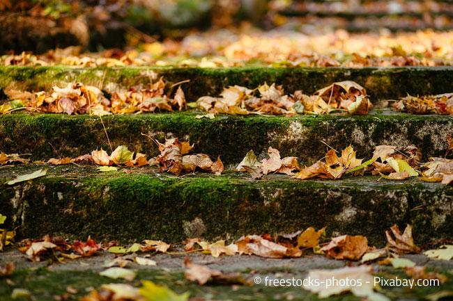Herbstlaub auf Treppen in Verbindung mit Regen kann zu einer ernsten Gefahrenquelle werden