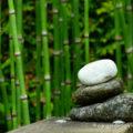 bambus-urlaubsfeeling