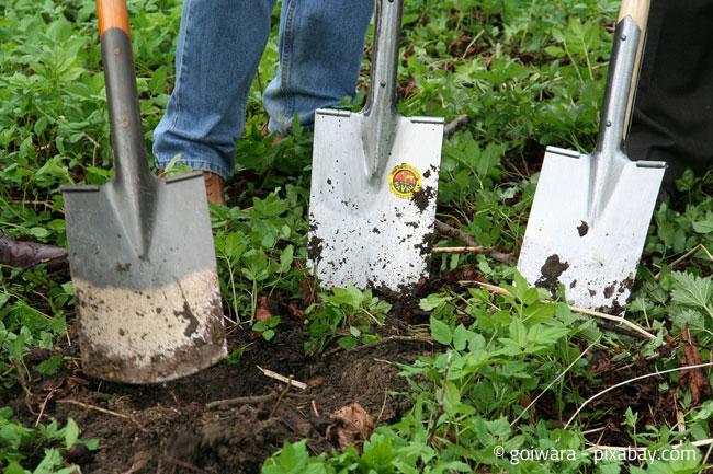 Umgraben im Garten - Auch im Winter