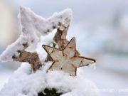 garten-winter