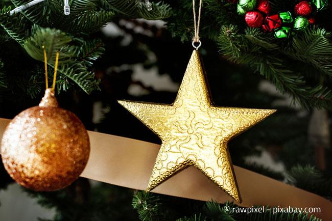 Ein Weihnachtsbaum macht auch im Garten eine gute Figur