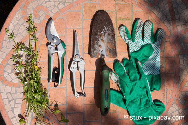 Eine Heckenschere und passende Handschuhe sind äußerst nützlich bei der Gartenarbeit
