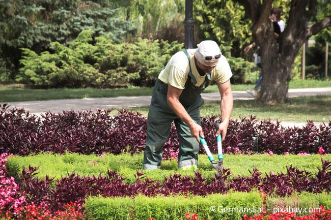 Kleidung für die Gartenarbeit sollte möglichst robust sein