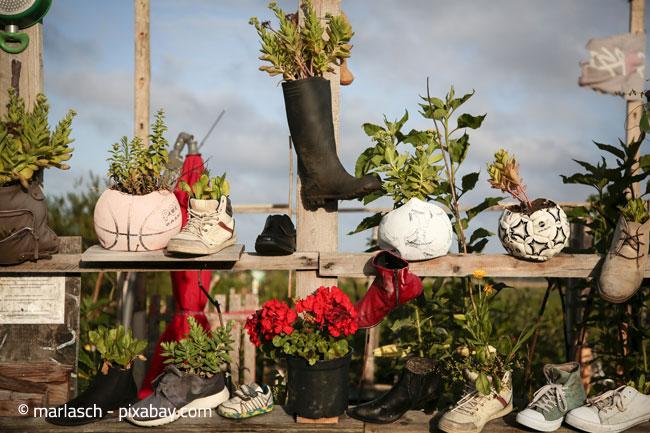 Ausgediente Schuhe oder Gummistiegel sind eine wunderbare Idee für ein Pflanzgefäß