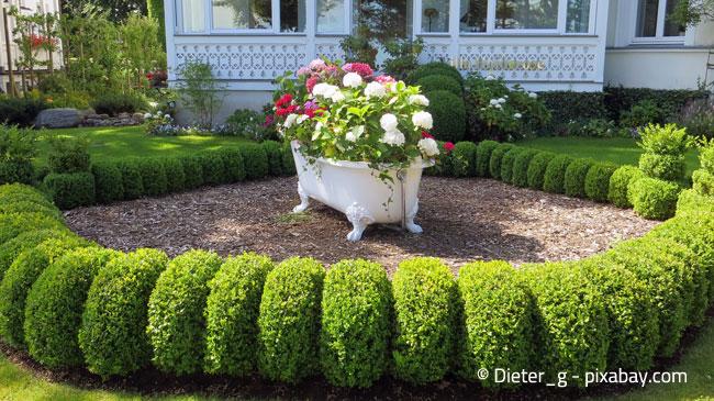 Auch eine Badewanne kann Ihre Blumen imposant in Szene setzen