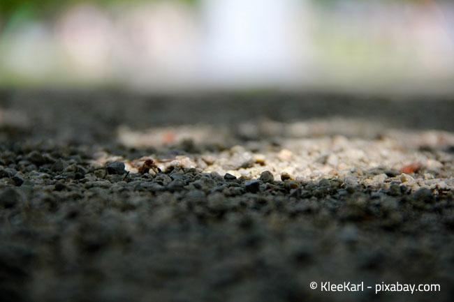 Nutzen Sie lieber Splitt oder kleinen Kies statt Streusalz für Ihre Gartenwege