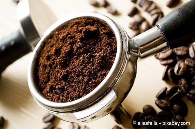 Kaffeesatz ist ein wunderbarer natürlicher Dünger. Wichtig: Vorher komplett austrocknen lassen, um Schimmeln zu vermeiden