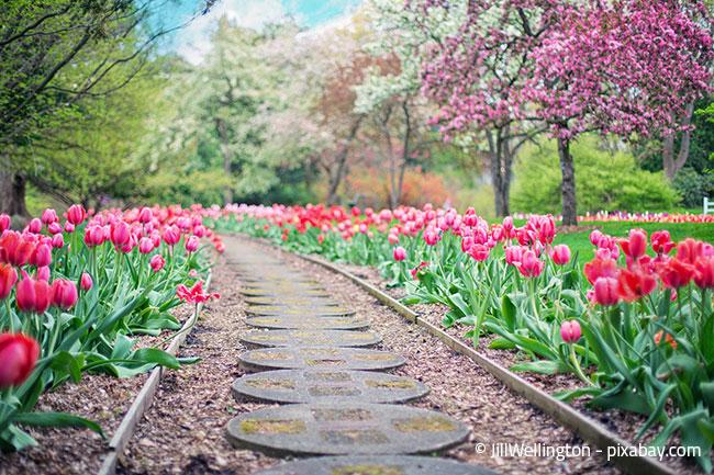 Ein Gartenhaus ist immer auch eine Platzfrage, die Sie vor der Anschaffung unbedingt berücksichtigen sollten