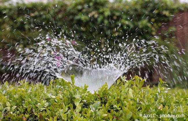 Automatische Bewässerungssysteme - Komfortabel & Sparsam