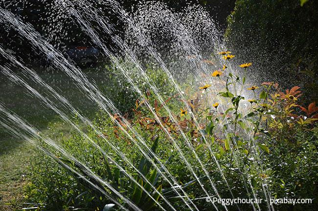 Eine automatische Rasenbewässerung ist simpel und effektiv