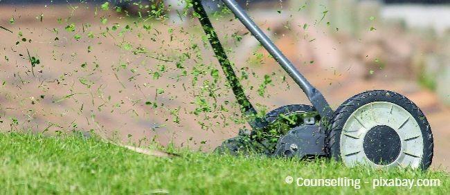 Vom Frühjahr bis in den Oktober hinein sollten Sie Ihren Rasen regelmäßig mähen