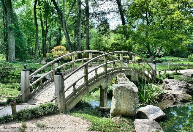 Die Elemente eines japanischen Gartens wirken beruhigend und einladend