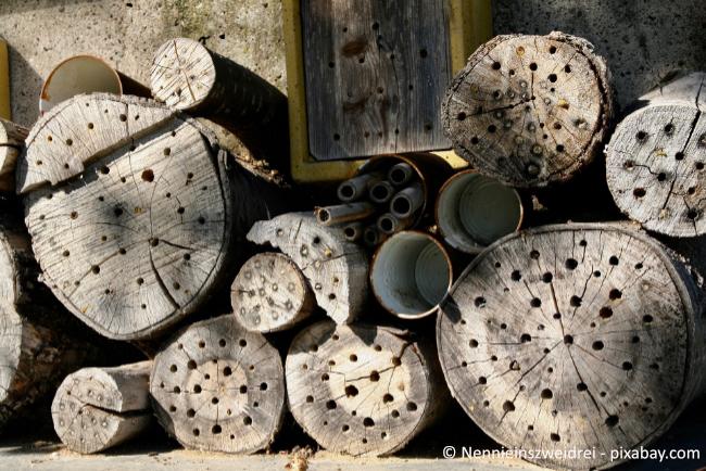 Wie wäre es mit einem Insektenhotel in Ihrem Garten? So können Ihre Kinder Bienen & Co. beobachten.