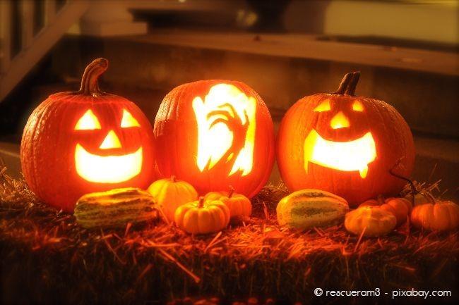 Halloween Deko Kuerbis Garten Hausxxl Garten Hausxxl