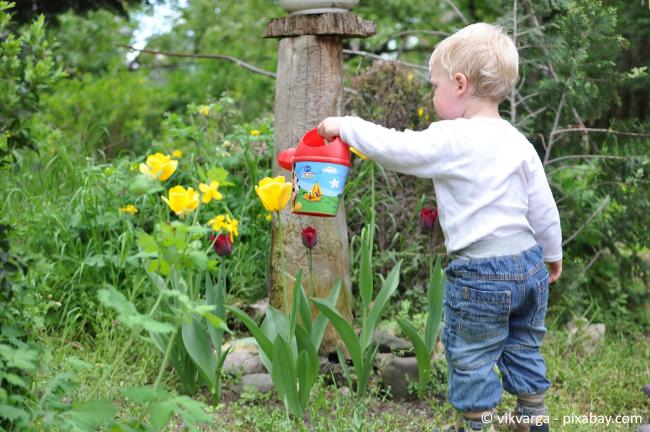 Je früher sich Ihre Kinder im Garten mit Flora und Fauna bekanntmachen, desto besser