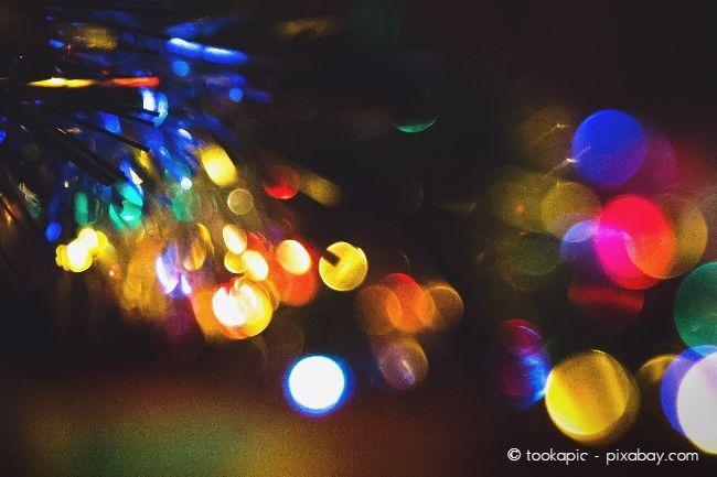 LED Lichterketten im Garten sind nicht nur ein optisches Highlight, sondern auch stromsparend