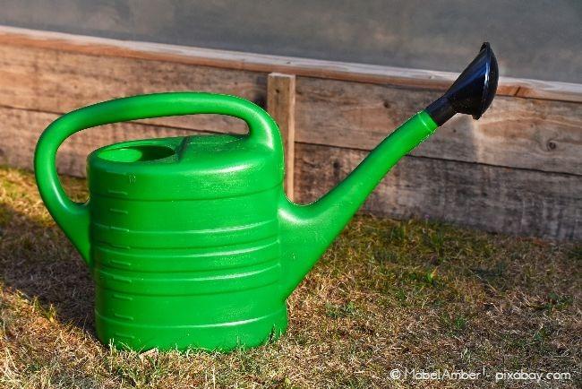 Besonders an heißen Tagen benötigen Rasen und Pflanzen dringend Wasser