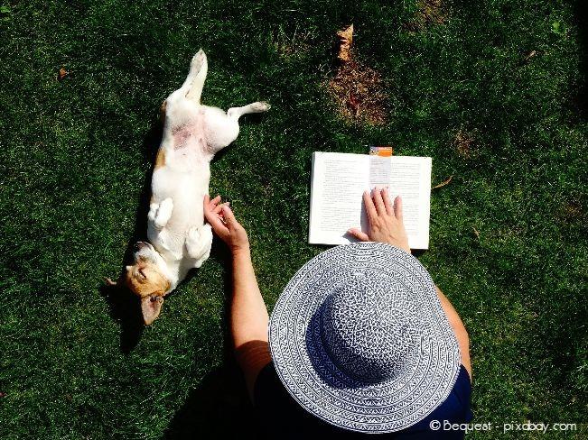 Auch gemeinsame Pausen sind wichtig, denn Hunde haben ein hohes Ruhebedürfnis über den Tag verteilt.